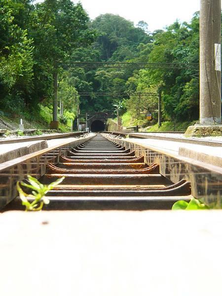 舊山線鐵軌-2.jpg