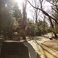 井之頭公園西園