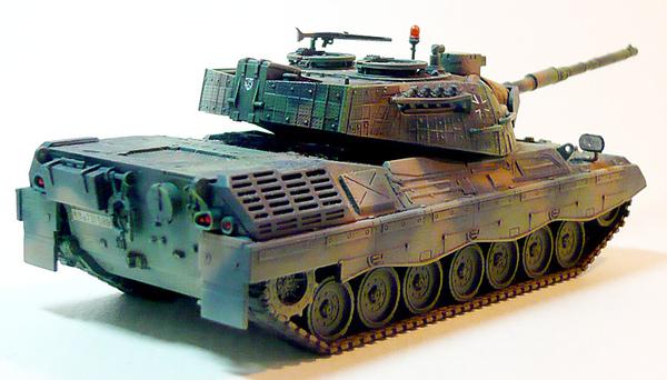 leopard1-2.jpg