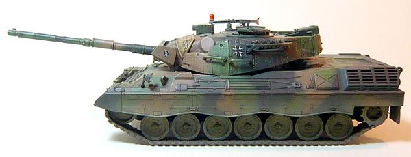 leopard1-4.jpg