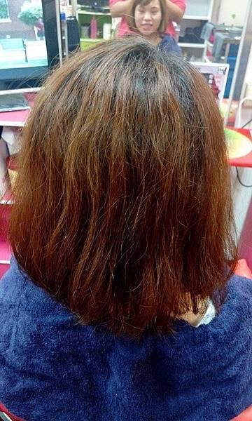 MAT520美特之約 泰和二店-日式染髮1