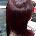 MAT520美特之約造型達人-日式染髮