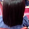MAT520美特之約造型達人-日式染髮16-1