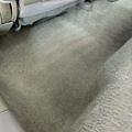 地毯4 (1).jpg
