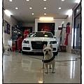 AudiA4鍍膜 (23).jpg