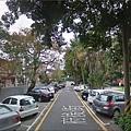 車停樹下.jpg