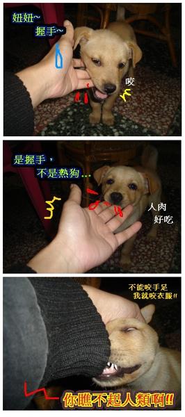 01妞妞握手.jpg