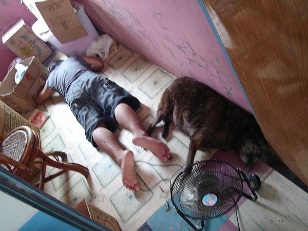 倒臥房內地板的弟妹們