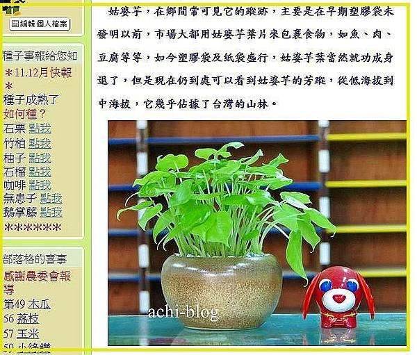 搬家-種子盆栽.jpg