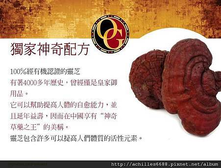 OG Opportunity PPT_Taiwan 0816_頁面_06.jpg
