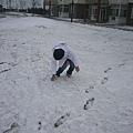 沒戴手套想玩雪的笨蛋