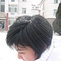 她頭上都是雪