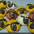 定案綿羊~第一批