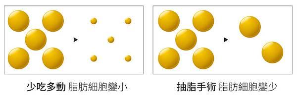 威塑抽脂台灣抽脂手術推薦二代威塑超音波抽脂費用抽脂副作用抽脂手術失敗案例 (1).jpg