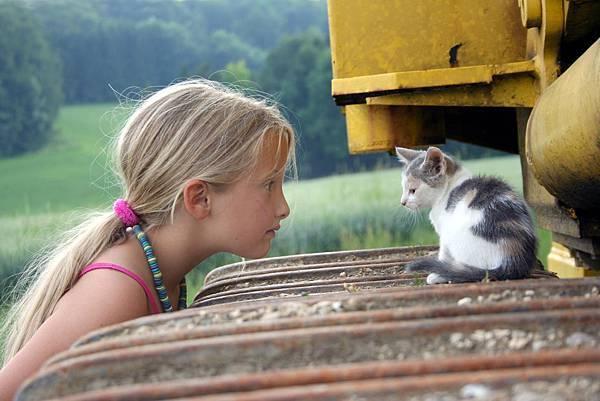 動物心靈溝通中階證書課程