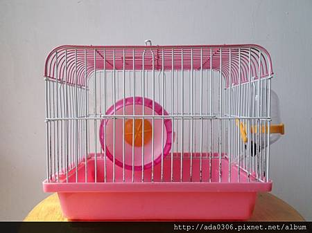 Canary平頂小鼠籠(俗稱百元鼠籠)