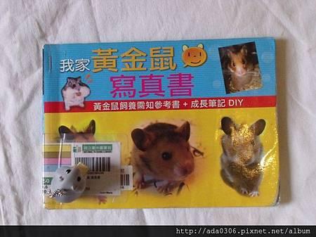 我家黃金鼠 寫真書:黃金鼠飼養須知參考書+成長筆記DIY