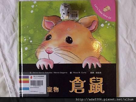 我們的新寵物.倉鼠