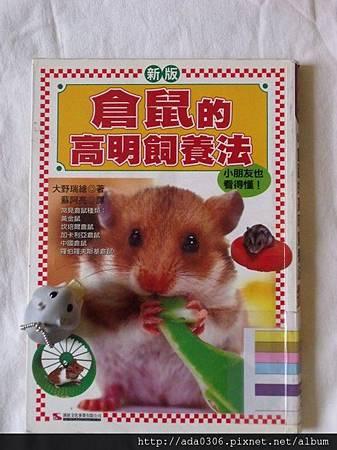 新版倉鼠的高明飼養法