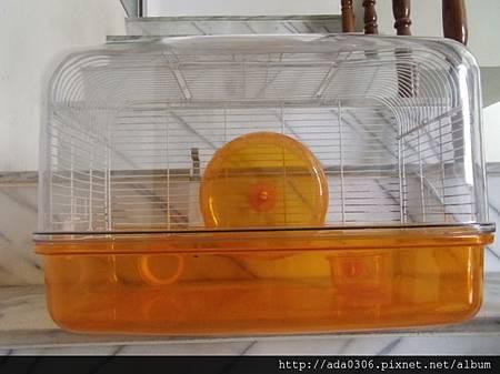 NPF橘色01.jpg