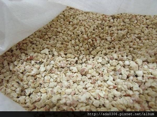 實驗室玉米梗粗的5.jpg