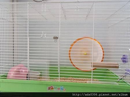 560大鼠籠2.jpg