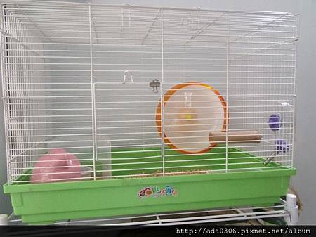 560大鼠籠3.jpg