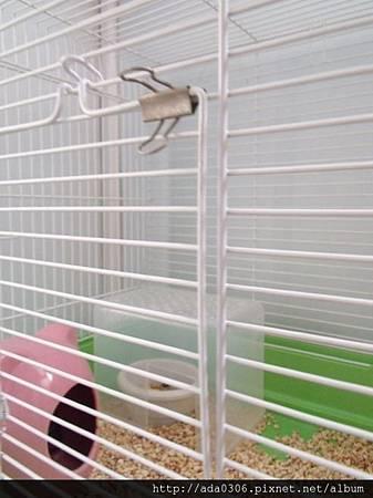 560大鼠籠4.jpg