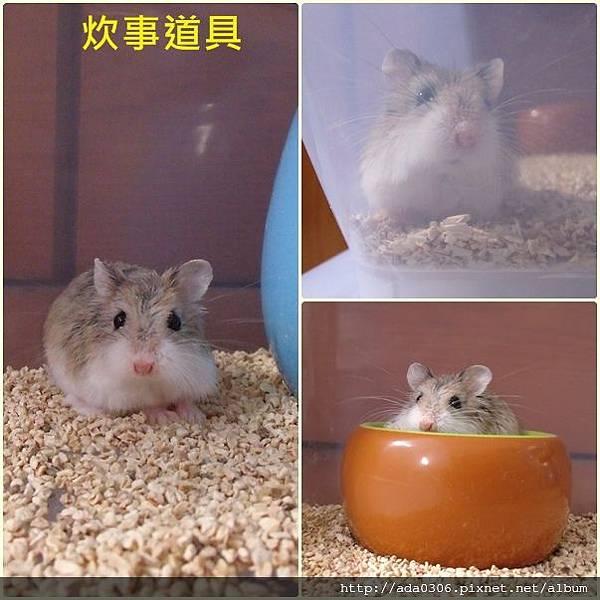 炊事道具二宣組圖.jpg
