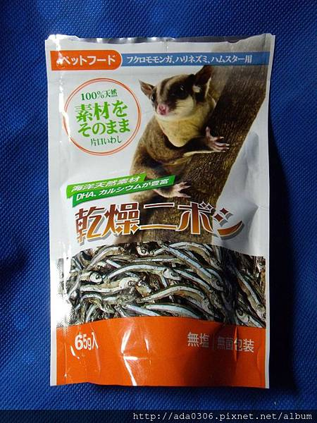 Canary小丁香魚1.jpg