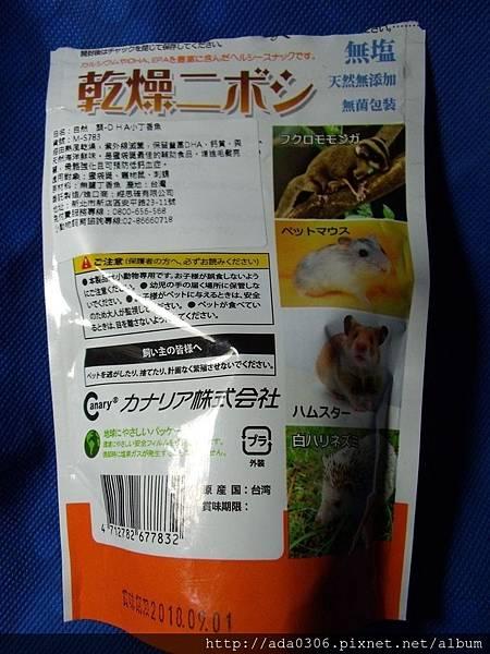 Canary小丁香魚2.jpg