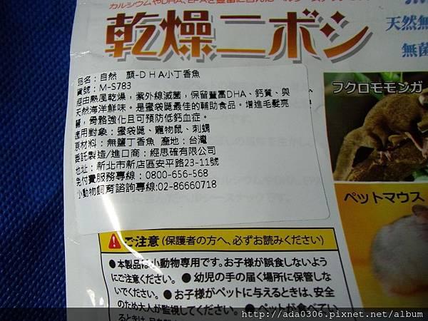 Canary小丁香魚3.jpg
