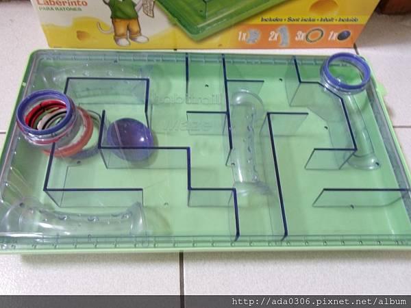 赫根哈比鼠迷宮 (4).JPG
