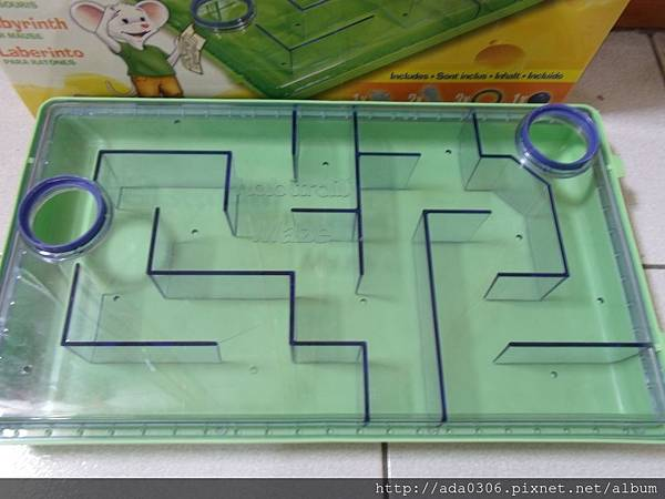 赫根哈比鼠迷宮 (7).JPG