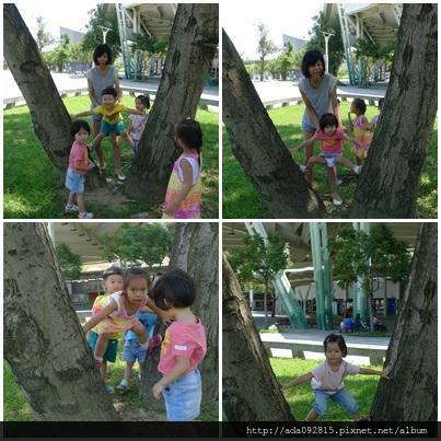 爬樹.jpg