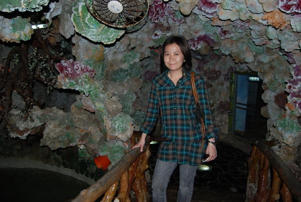 大義宮下蘊藏著豐富的海底資源 - 綠蠵龜