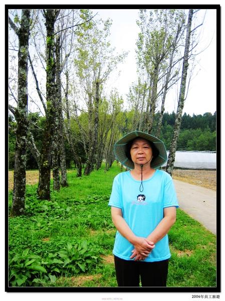2006年 員工旅遊 (20).jpg