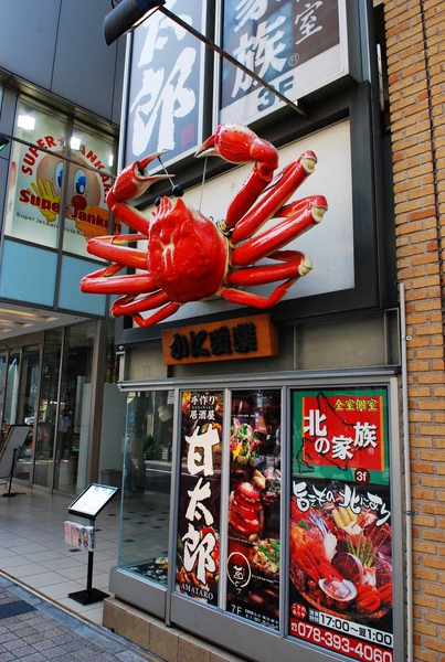好大隻的螃蟹~ (很少人在神戶吃)