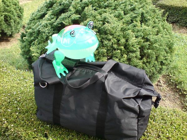 青蛙與行李