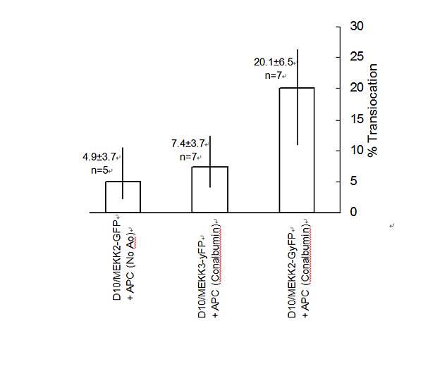 瑞士活胞療法和T細胞之關係原文(英)圖片
