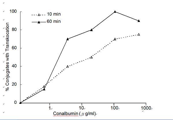 瑞士活胞療法和T細胞之關係原文(英)圖片P-6