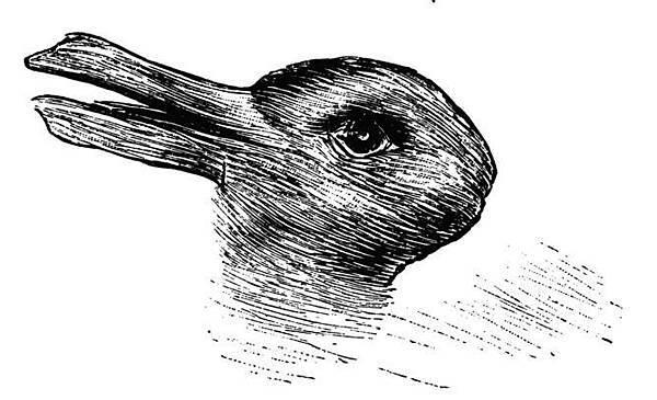 是鴨?還是兔?-2.jpg