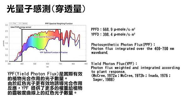 光量子感測PPF.jpg