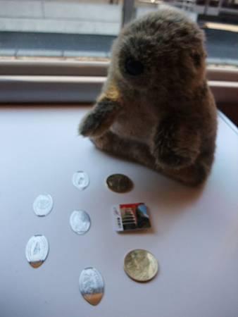 土撥鼠和紀念幣