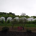 安心院葡萄園