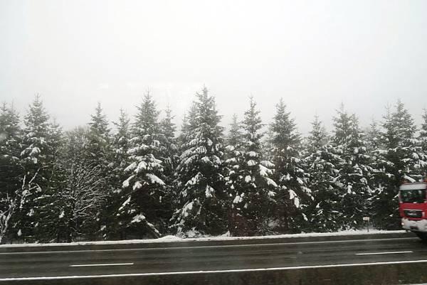 前往盧森堡途中的雪景02.JPG