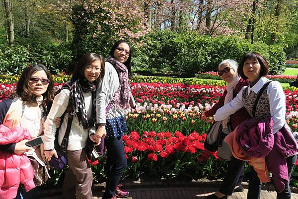 庫肯霍夫花園(KEUKENHOF)268.JPG