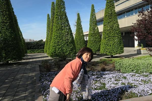 鮮花拍賣市場門口旁20.JPG