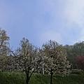 盧森堡飯店白天景色15.JPG