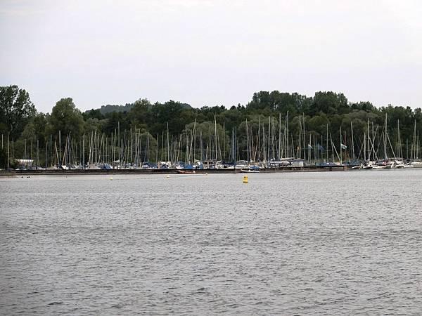 琴湖 (49).JPG